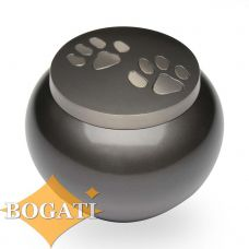 Double Paw Print Brass Pet Cremation Urn - Small