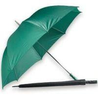 Coachman's Umbrella