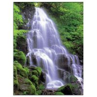 Waterfall Service Record