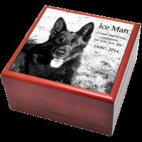 Dog Urns: Cherry Finish Wood Photo Tile Urn Box- 2 sizes