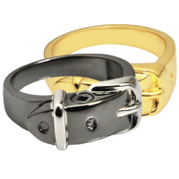 Pet Cremation Jewelry Ring- Collar