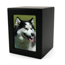 Black MDF Pet Photo Cremation Urn - Medium