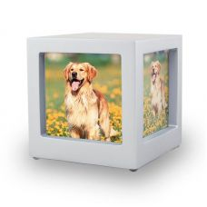 Silver Pet Photo Cube Urn - Small