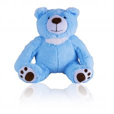 Loving Teddy Bear Blue Keepsake Urn
