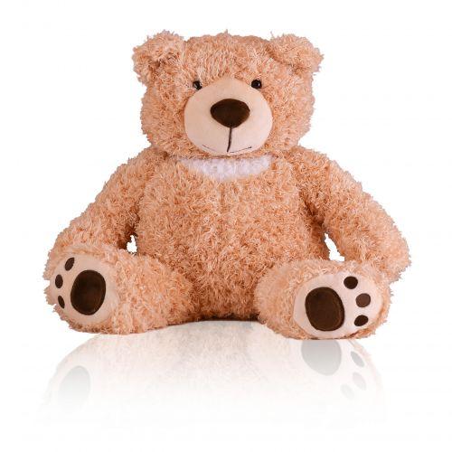 Loving Teddy Bear Keepsake Urn -  - 22801
